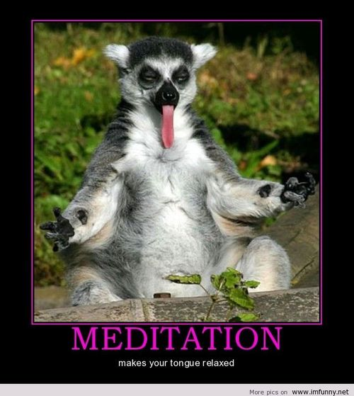 Animal Doing Meditation and Sticking Its Tongue Out