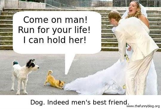Dog Is The  Mans Best Friend - Funny Reason Why