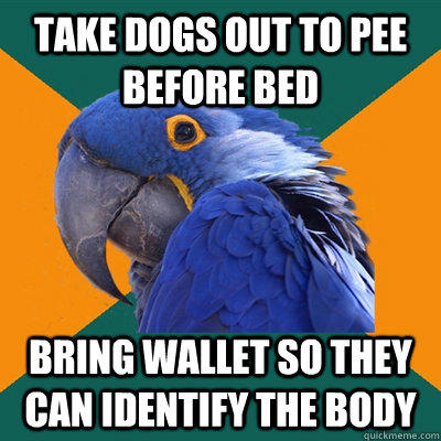 Funny Pictures of Paranoid Parrot - Dead Body