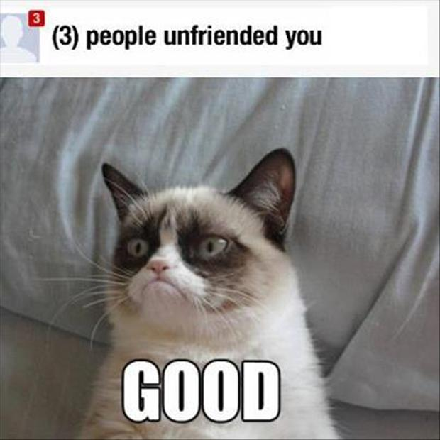 funny-grumpy-cat-pictures-unfriended