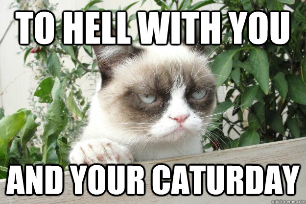 to-hell-with-caturday