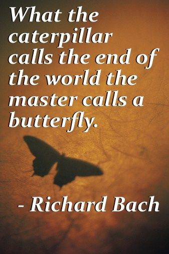 Gentil Inspiring Richard Bach Quotes On Life