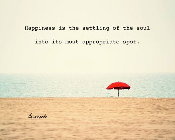 Happiness is the settling of the soul into its most appropiate spot - Aristotle