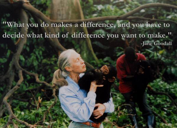 Jane Goodall Quotes About Making A Difference