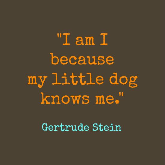 Funny Gertrude Stein Quotes