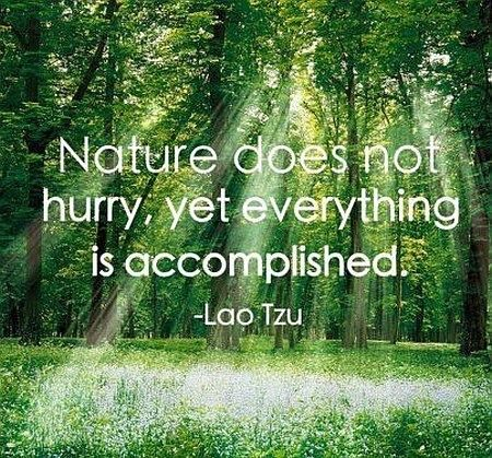 Tao Te Ching Quotes About Nature