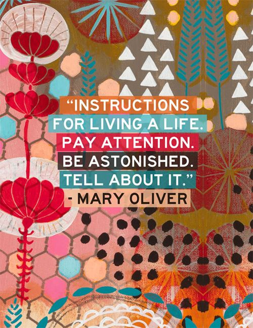 Best Mary Oliver Poems