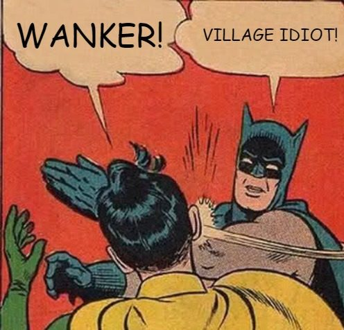 Robin And Batman Insulting Each Other With Funny Names